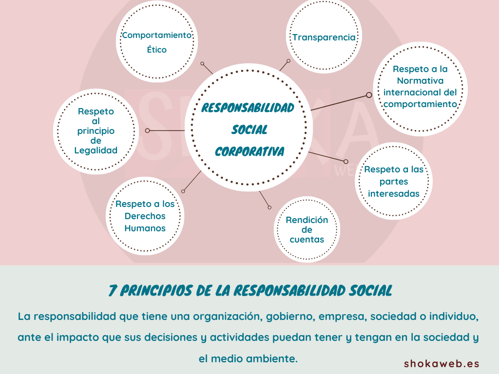 Pincipios Responsabilidad social Shokaweb